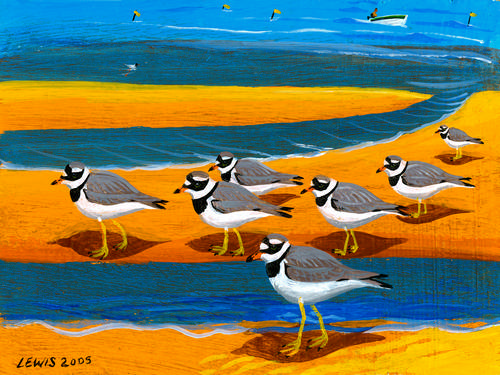 Bird Art Prints by Brian Lewis, Ringed Plovers